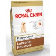 Royal Canin Labrador Retriever Cachorro