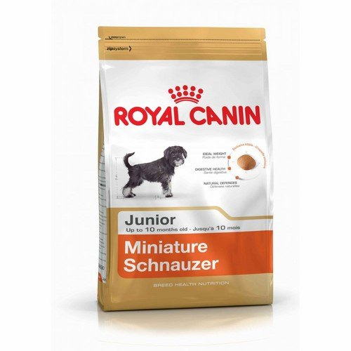 Royal Canin Mini Schnauzer Cachorro